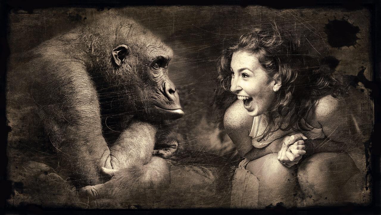 Bedeutung von Freundschaft - Frau begegnet Gorilla